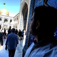 سید پوریا هاشمی